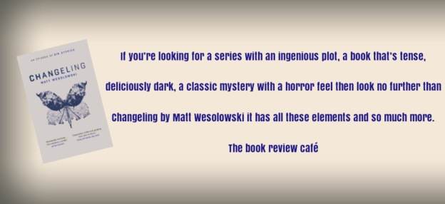 Book Series The Book Review Caf